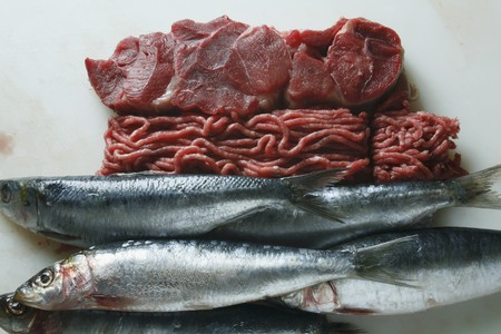 tunafish: Still life with fish and fish meat