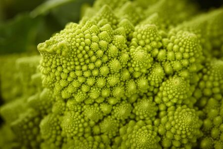 romanesco: Romanesco (close-up) LANG_EVOIMAGES