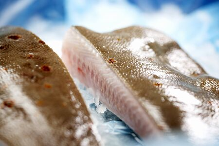 plaice: Fresh plaice in a container with ice
