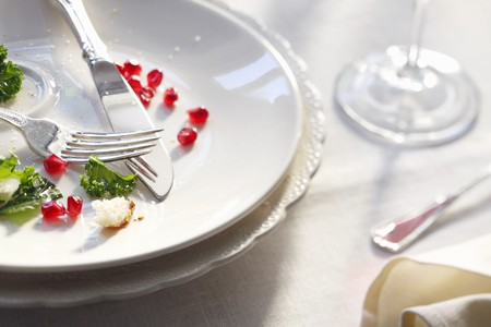 leavings: Dinner Remains on a White Plate; Pomegranate Seeds, Kale, Fork and Knife LANG_EVOIMAGES