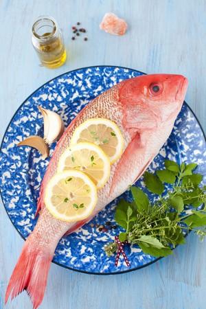 lemon slices: Tutta la Red Snapper con erbe fresche e fette di limone su un piatto bianco e blu LANG_EVOIMAGES