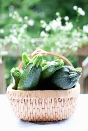 cocozelle: Fresh Whole Zucchini in a Basket