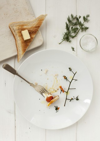 leftovers: Remains of a fried egg with tomatoes and toast LANG_EVOIMAGES