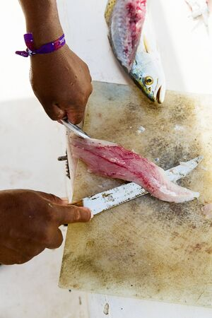 being: Ceviche being made: fish being filleted