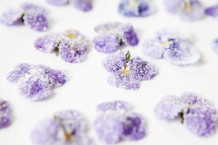 crystallized: Candied violets