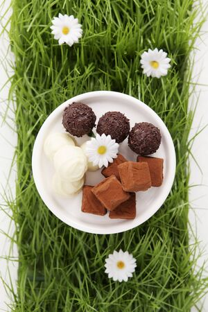 sweet grasses: Assorted chocolates in artificial grass