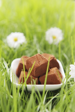 sweet grasses: Chocolate truffles in artificial grass