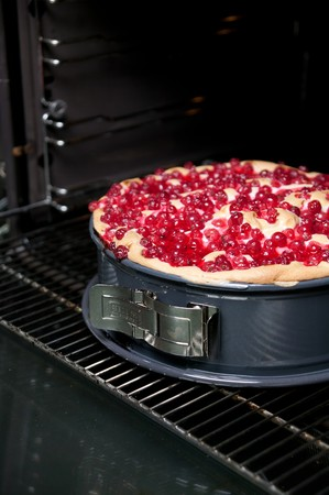 solo form: Redcurrant cake in a spring-form cake tin
