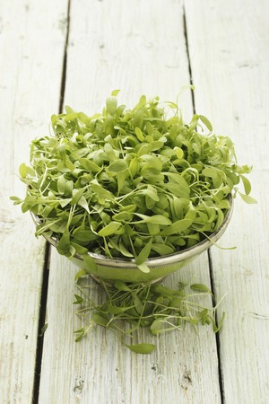 water cress: Fresh watercress in a bowl on a wooden surface LANG_EVOIMAGES