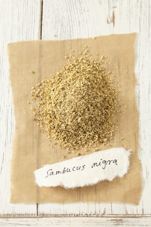 nature cure: Dried flowers from the black elder plant (Sambucus nigra)