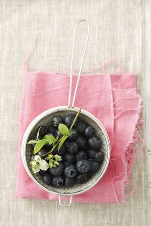 sieve: Blueberries in a sieve