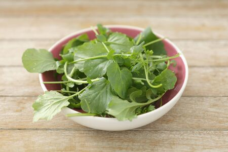 watercress: Watercress in a small bowl LANG_EVOIMAGES