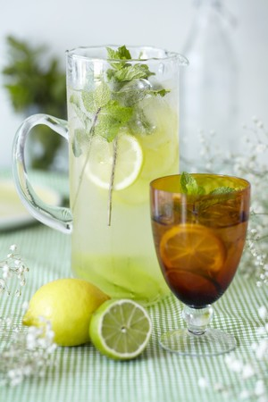 Lemon and lime cordial with peppermint and ice cubes