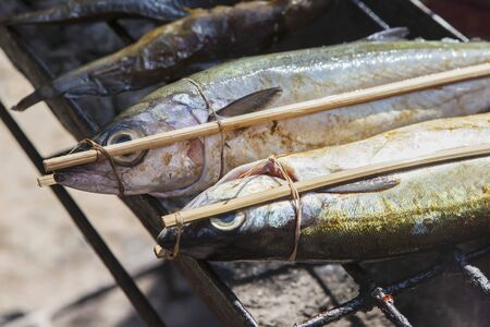 qs: Fresh fish on the barbecue