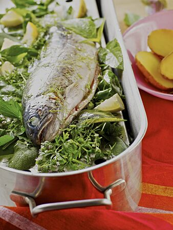 salmo trutta: Trout in a bed of herbs LANG_EVOIMAGES