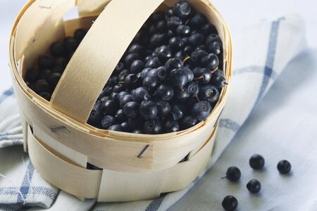 bilberries: Bilberries in a punnet LANG_EVOIMAGES