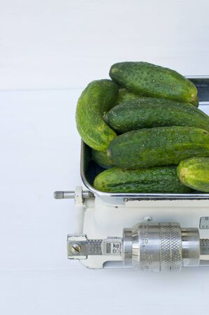pickling: Fresh pickling cucumbers on an old set of kitchen scales LANG_EVOIMAGES