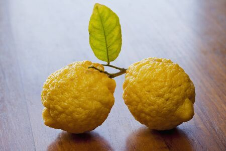 twos: Two lemons with leaf