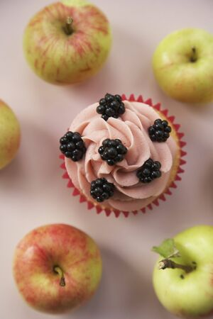 brambleberries: Cupcake with blackberries, surrounded by fresh apples