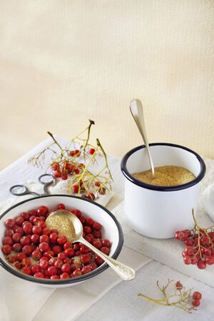 wildberry: Ingredients for jam made from rowan berries LANG_EVOIMAGES
