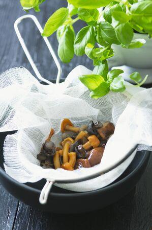 muslin: Assorted mushrooms in a muslin cloth in a sieve, and fresh basil