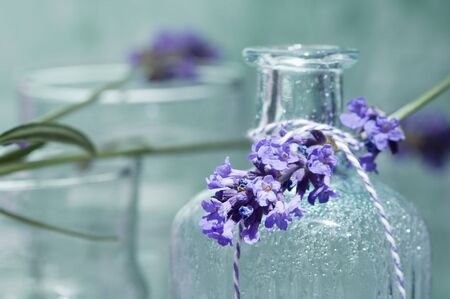 complementary therapy: A sprig of lavender on a bottle of scented oil