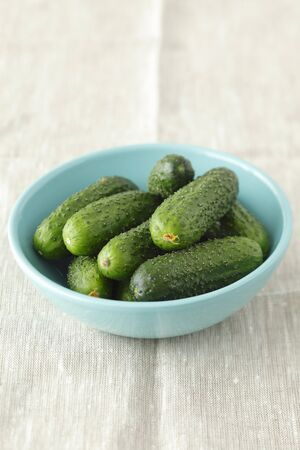 pickling: Several pickling cucumbers in a pale blue bowl LANG_EVOIMAGES
