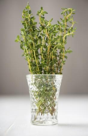 water thyme: Tomillo fresco en un vaso de agua
