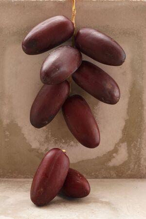 dactylifera: Cluster of fresh dates