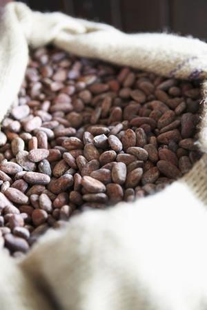 cacao beans: Los granos de cacao, Granada