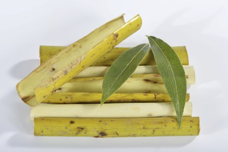 salix alba: White willow (bark, peeled twigs and leaves)
