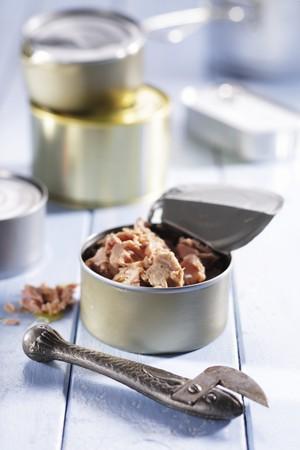 tunafish: A tin of tuna