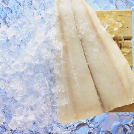 halibut: Halibut fillet on ice LANG_EVOIMAGES