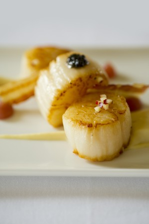 mollusc: Fried scallops (close-up)