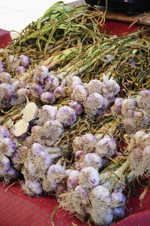 bunched: Bundles of garlic on a market stand
