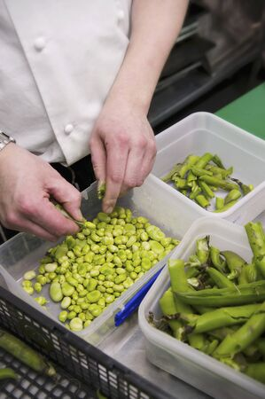 provenance: Beans being shelled