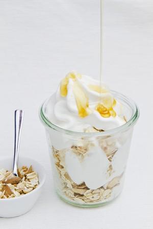 yogurt ice cream: Frozen yogurt with honey and oats