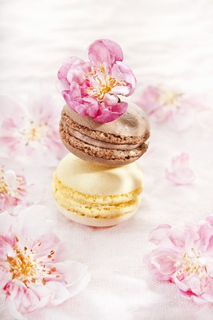 kwiat jabłoni: Two macaroons with apple blossom LANG_EVOIMAGES
