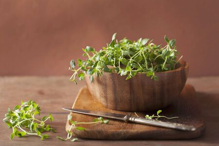 brownness: Thyme in a wooden bowl LANG_EVOIMAGES