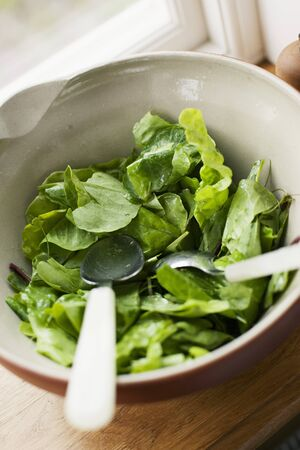 windowsill: A bowl of lettuce on a windowsill LANG_EVOIMAGES