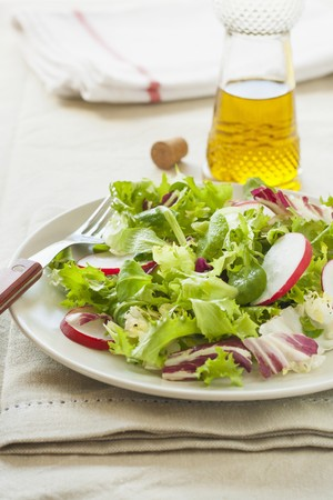 water cress: A fresh salad with radishes, lettuce and watercress LANG_EVOIMAGES