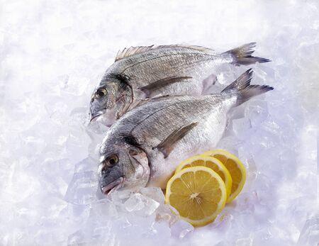 lemon slices: Due Dorades su ghiaccio con fette di limone