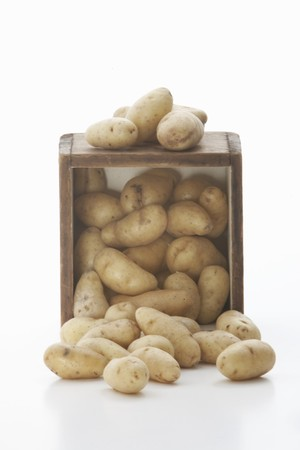 fingerling: Fingerling Potatoes Spilling from a Crate; White Background