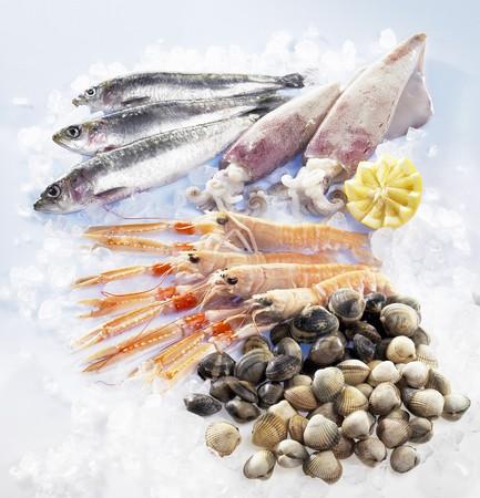 sardinas: Las sardinas, calamares, gambas y m�sculos