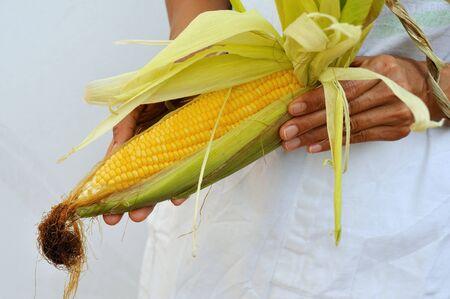 corn on the cob: A woman holding a corn cob