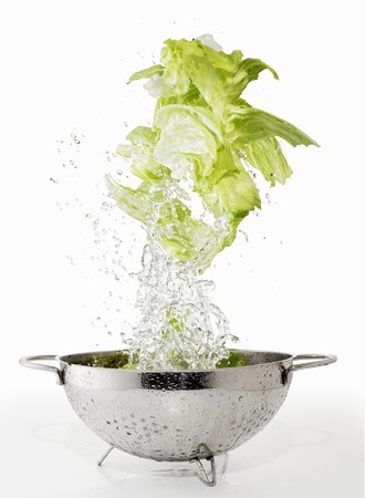 Iceberg lettuce being washed in a colander