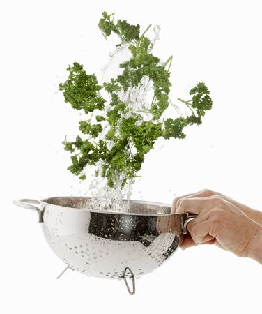 being: Parsley being washed