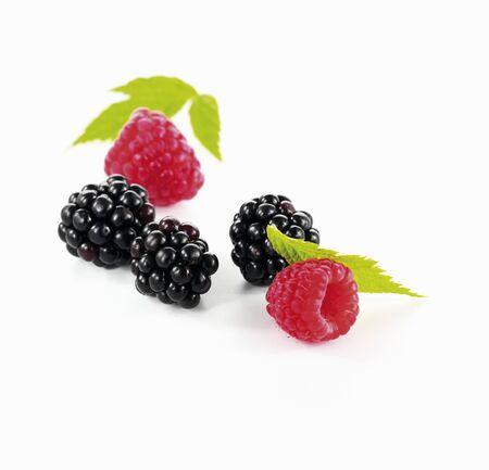 brambleberry: Blackberries and raspberries with leaves LANG_EVOIMAGES