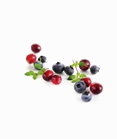 vaccinium macrocarpon: Cranberries and blueberries