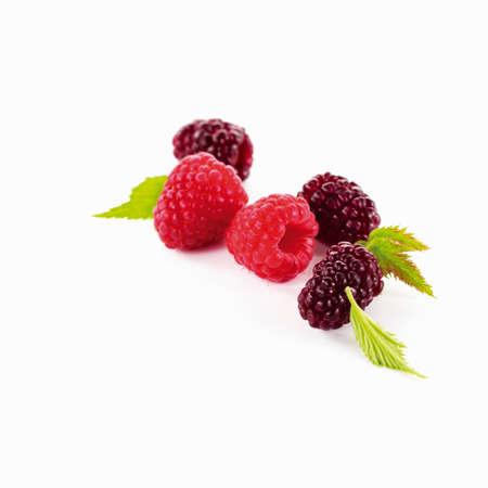 brambleberries: Raspberries and blackberries with leaves